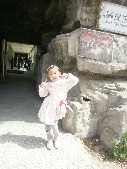 大兴 野生动物园